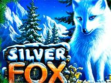 Азартная игра Silver Fox играть