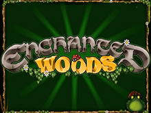 Играть в азартную игру Enchanted Woods