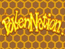Pollen Nation играть онлайн